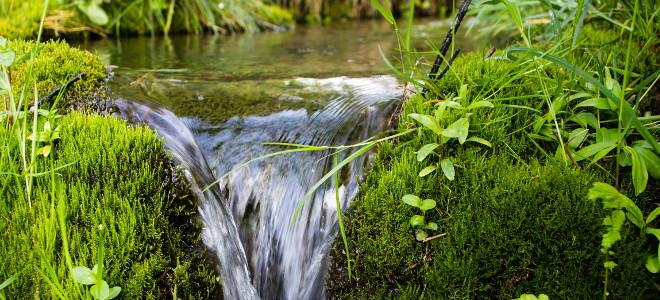 Mineralwasser u. Schorlen